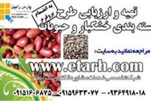 بسته بندی حبوبات در تهران