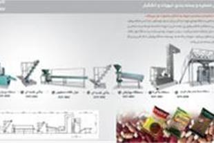 قیمت دستگاه بسته بندی خشکبار  خط تولید حبوبات