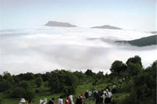 تور گردشگری و طبیعت گردی جنگل ابر