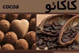 فروش پودر کاکائو  Cocoa Powder TIARA
