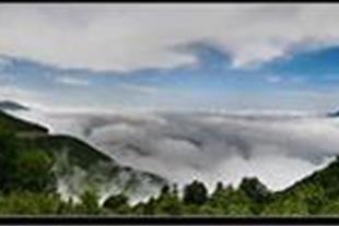 راهنمای جنگل ابر