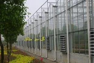 ساخت گلخانه شیشه ای طرح ونلو