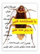 سمپاشی حشرات و موش موریانه زدایی تضمینی خوزستان