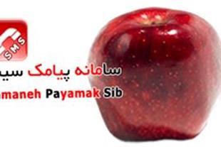 سامانه پیامک سیب | New Word