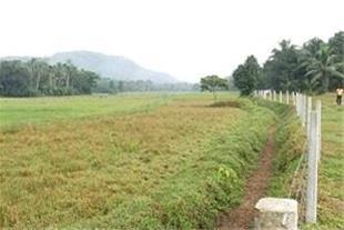 فروش زمین با موقعیت منحصر به فرد در فیروز کوه