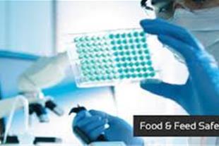 کیت های آزمایشگاهی الایزا Anti H.pylori IgA