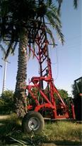 lifter palm