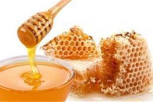 فروش عسل آویشن درجه یک و اصل