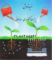 فروش پرلیتperlite  زمین کاو در کشاورزی  و باغبانی