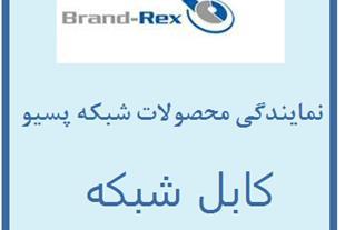 نمایندگی محصولات شبکه پسیو برندرکس Brand-Rex