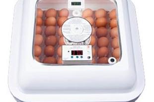 فروشنده دستگاه جوجه کشی 48 تایی ، خرید دستگاه جوجه