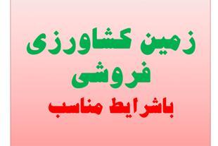 فروش زمین کشاورزی 200 هکتاری در قزوین