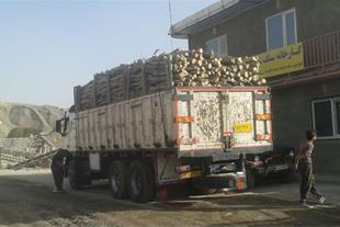 فروش عمده چوب اکالیپتوس