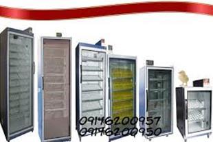 تولید و فروش انواع دستگاه های جوجه کشی خانگی-صنعتی