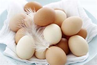 فروش تخم های نطفه دار