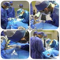 آموزش تربیت حیوانات خانگی بیمارستان دامپزشکی درین
