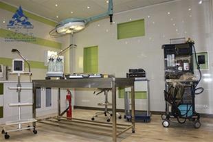 شیمی درمانی حیوانات خانگی بیمارستان دامپزشکی درین