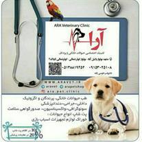 کلینیک دامپزشکی حیوانات خانگی و پرندگان آرا