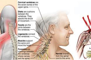 کلینیک درد ، کنترل و درد مزمن و حاد مشهد