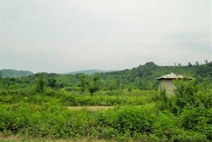 فروش زمین در لواسان با قیمت مناسب