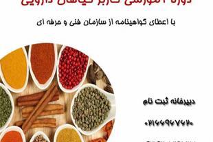 آموزش خشک کردن گیاهان دارویی