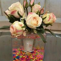 گلدان آکواریوم