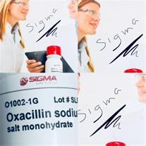oxacillin sodium  sigma