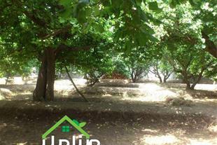 فروش باغچه 525 متری در لم آباد کد 1255