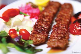خرید پستی کباب پز دوگانه سوز پلین  (اورجینال)