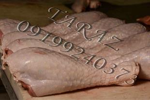فروش عمده گوشت بوقلمون وقطعه بندی بوقلمون