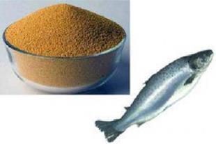 طرح توجیهی تولید پودر ماهی