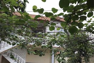 فروش خانه ویلایی 480متر امل