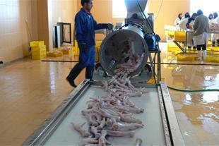 فروش کارخانه مواد غذائی و گوشتی