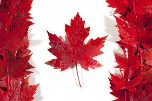 دعوتنامه رسمی کانادا