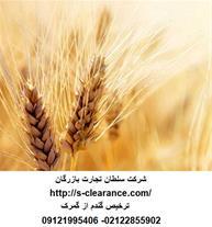 ترخیص گندم از گمرک- سلطان تجارت بازرگان