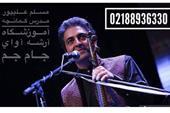آموزش کمانچه مسلم علیپور در آموزشگاه موسیقی