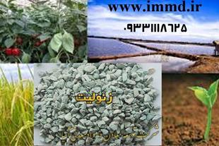 فروش زئولیت کشاورزی