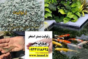 فروش ویژه زئولیت بستر پروش ماهی و آبزیان