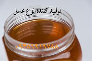 تولید و فروش عسل طبیعی