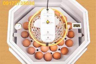 فروش ویژه دستگاه جوجه کشی 30 تایی