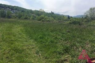 فروش 1400 متر زمین جنگلی با ویوی عالی