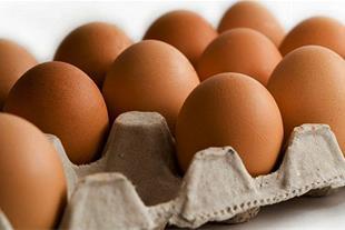 تخم مرغ الماس قهوه ای ( هلندی )