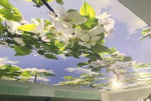 سقف استخر - سقف کششی و آسمان مجازی بانی روف (لابل)
