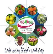 تولید -فروش درخت میوه نهالستان پارس