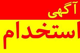 استخدام طراح سایت، گرافیست و بازاریاب شیراز
