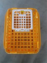 فروش ویژه قفس مرغ زنده