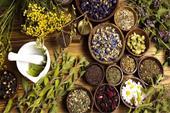 فروش گیاهان دارویی