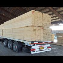 واردات چوب