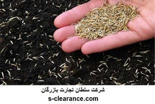 ترخیص بذر چمن از گمرک