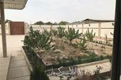 خرید و فروش باغ ویلا شهریار کد 422 املاک بمان